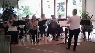 "Fantasy on ""Amazing Grace"" for Flute Choir"