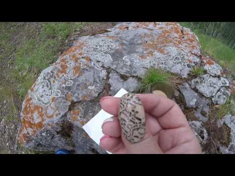 Магия камней. Что помогает творческим людям. Уваровит, пегматит, авантюрин, малахит