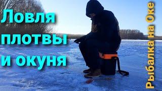 ШОК 5 кг рыбы за два часа на Оке Ловля окуня зимой 2020 Как найти плотву Зимняя рыбалка на Оке