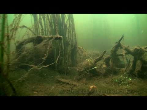 How to film in HD underwater on the bottom of river Liffey, Ireland.