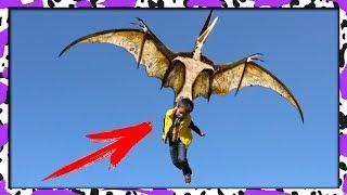 Гнездо ПТЕРОДАКТИЛЯ динозавра в реальной жизни