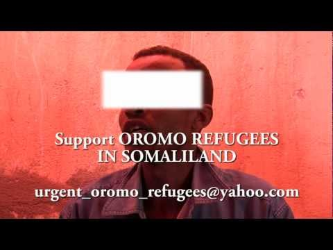 support oromo refugees in somaliland