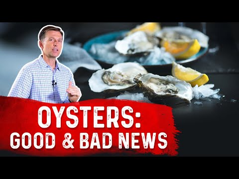 Oysters: The Good & Bad News