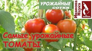 Какие ТОМАТЫ САМЫЕ урожайные? Это и перцев касается, и баклажанов, и всех других растений!
