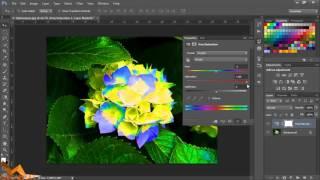 Photoshop уроци за начинаещи епизод 2  Layers и Adjustments (Урок 2014)
