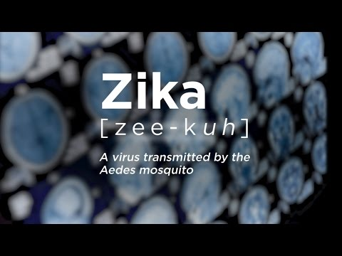 Developing a Vaccine for Zika