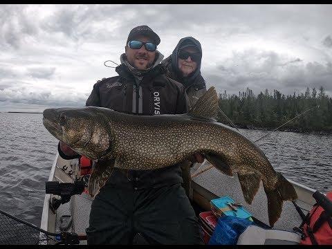 Ice Out Lake Trout (Kasba Lake Lodge)- Mig Sig Outdoors