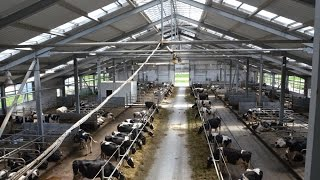 БГСХА.Ферма из металлоконструкций для основного стада молочного КРС(Ферма из металлоконструкций для основного стада молочного КРС. Учебно-товарная молочная ферма, Белорусска..., 2014-10-01T12:47:59.000Z)