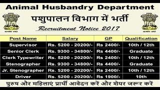 Animal Husbandry Department Recruitment 2017 | Clerk Job | Govt Job
