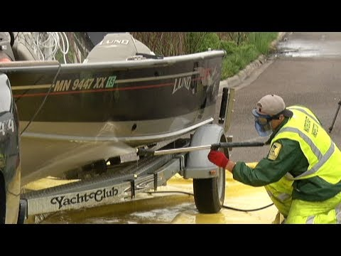 Ramping Up the Battle Against Zebra Mussels