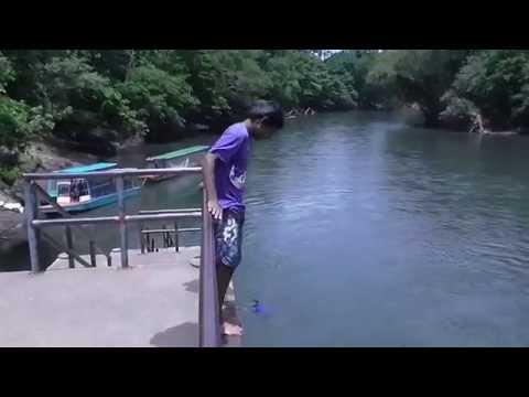 Los Jovenes del Rio Sarapiqui