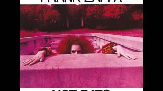 Frank Zappa — It Must Be a Camel