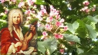 Vivaldi - Vier Jahreszeiten - Four Seasons - Spring - 4 Jahreszeiten - Frühling - Antonio Vivaldi