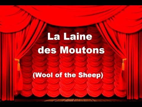 """""""La Laine des Moutons"""""""