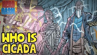 Who is Dc Comic's Cicada? New Flash Season 5 Villain Explained (Nerdgasm Quickie)