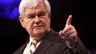 Conservative Citizen  Newt Gingrich on The Sean Hannity Show (5/20/2019)
