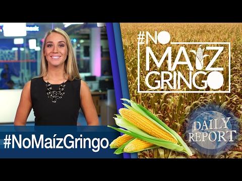 Maiz importation Boycott | World press photo 2017 | The DACA program