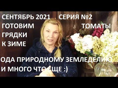 Сентябрь 2021 серия №2 Готовим грядки к зиме.  Урожай тыквы и много что еще)
