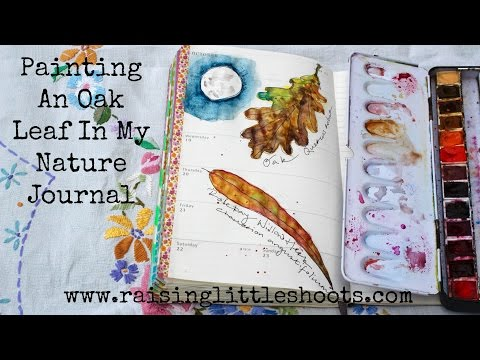 Painting an Oak leaf in my nature journal