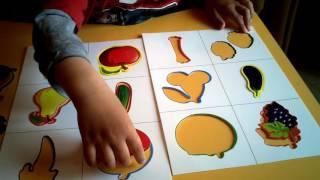 Урок по изучению фруктов и овощей