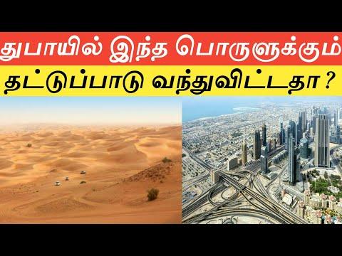 Even desert city Dubai imports its sand?|UAE|துபாய் செய்திகள்|தமிழ்