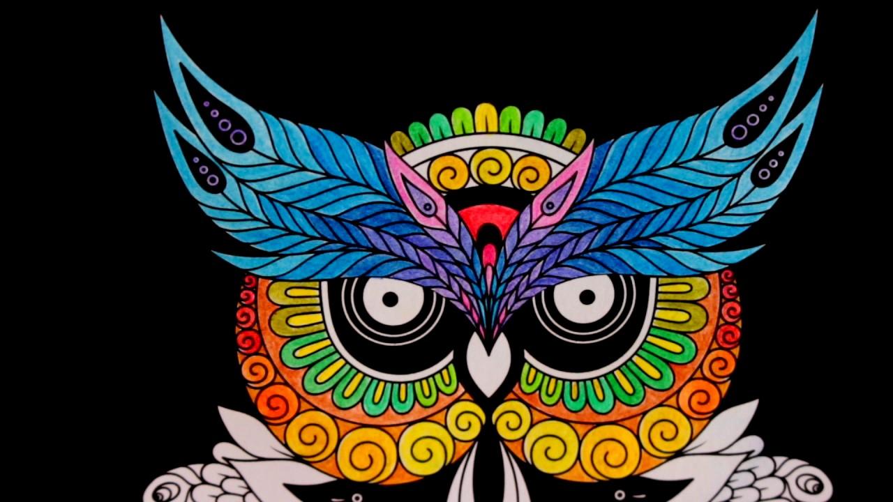 New Cool Mandala Owl Shaped Design Coloring For Adults Oiseaux