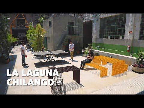 Conoce La Laguna, un especio cultural único en la CDMX | CHILANGO
