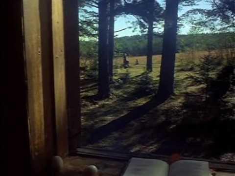 Mirror Andrei Tarkovsky, 1975