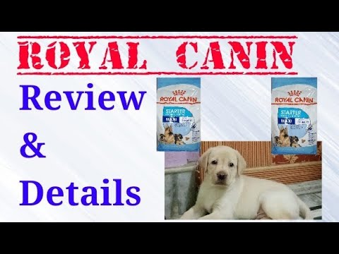 Royal Canin - How To Feed.  Full Details