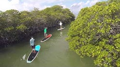 Paddleboard Eco Tour with Otherside Boardsports