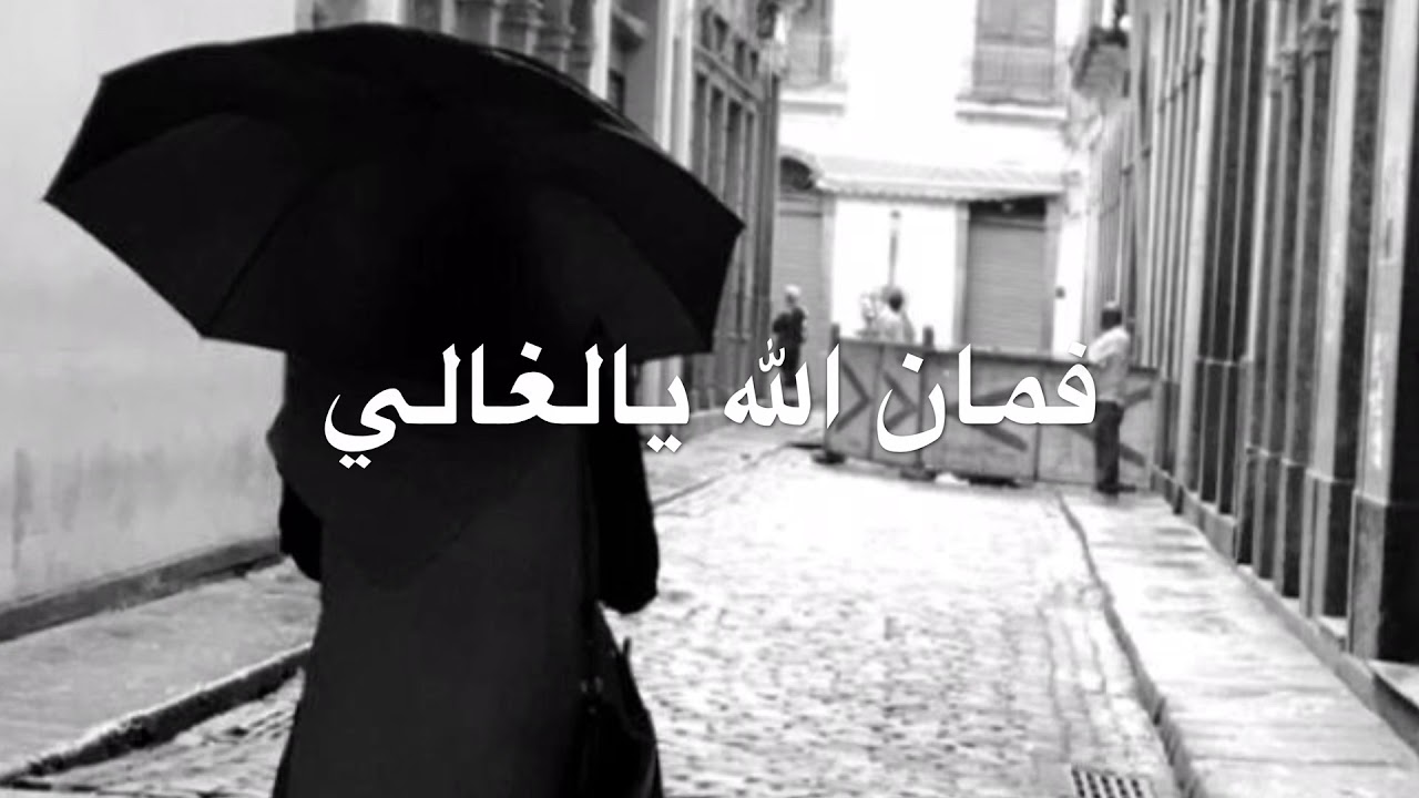 شلة فمان الله يالغالي بجودة عالية شعر بتول آل علي وأداء أحمد البادي Youtube