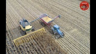 2018 Corn Harvest in Ashtabula County Ohio