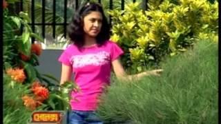 bangla song by babu pasher barir oi meyeti ballo sedin youtube