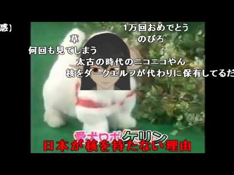 【逆輸入】 愛犬ロボ「ケリン」  【コメ付き】