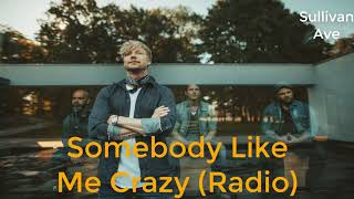 SUNRISE AVENUE | SOMEBODY LIKE ME (CRAZY) | RADIO (SHORT)