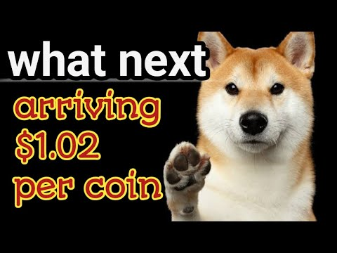 what is the future of dogecoin