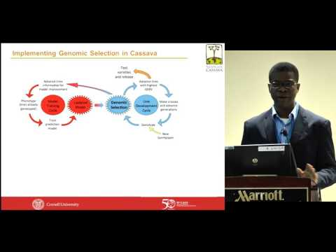Bringing Cassava Breeding into the 21st Century - Chiedozie Egesi - AAAS 2016
