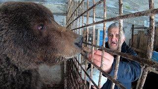 Eminovim medvjedima stigli volonteri i ćevapi