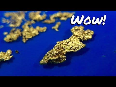 WOW! BIGGEST GOLD NUGGET of the year! Gold Fox Trommel