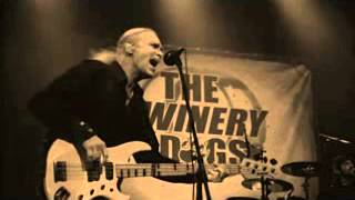 THE WINERY DOGS LIVE Not Hopeless