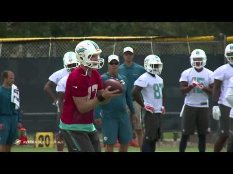 Josh Freeman Enjoying Transition To Dolphins