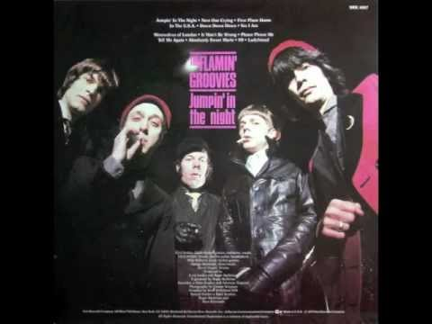 Flamin' Groovies - Jumpin' In The Night (Full Album)