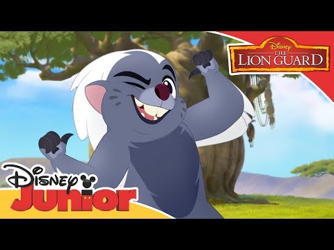 The Lion Guard - Bunga the Wise Song | Official Disney Junior Africa