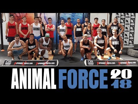 (Vídeo) Los guerreros de la Animal Force 2018, en acción