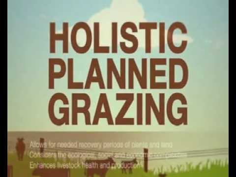 Holistic Planned Grazing