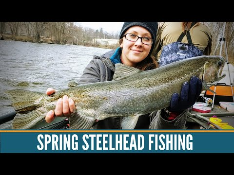 Steelhead Fishing Michigan / Michigan Fishing / Grand River Michigan