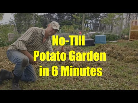 How to Build a No-Till Garden in Minutes