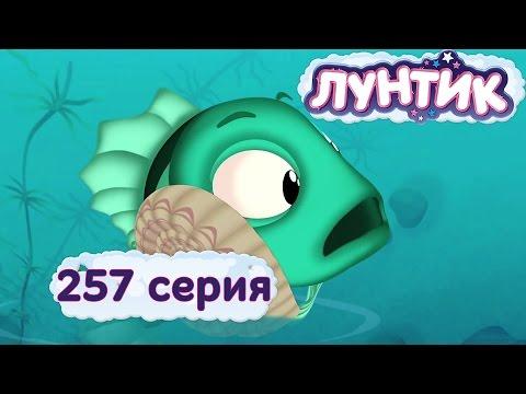 Лунтик и его друзья - 257 серия. Ракушка