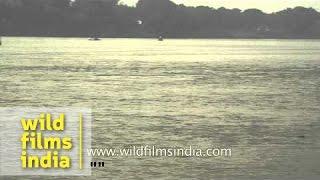 Konhara Ghat of Gandaki River : Bihar