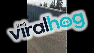 Tow Truck Loading Fail || ViralHog